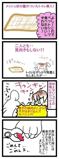 こぷつめトイレ.jpg