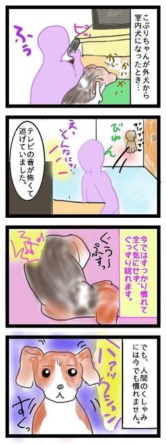 こわがりこぷり1.jpg