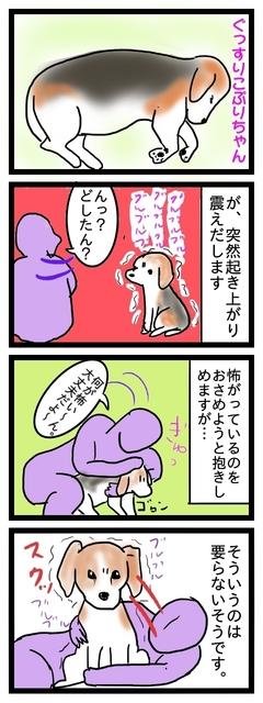 こわぷり.jpg