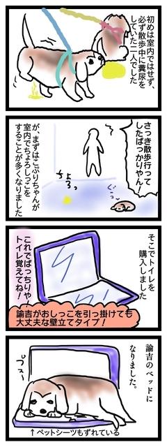 ゆきちのトイレ.jpg