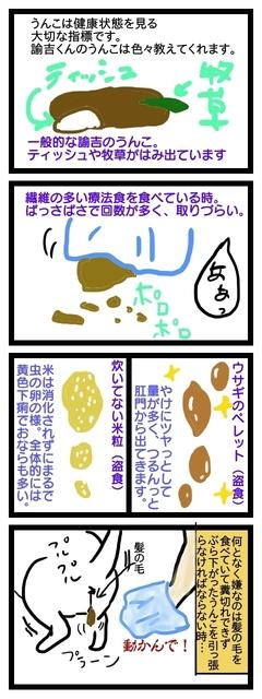 ゆきちの各種うんこ.jpg